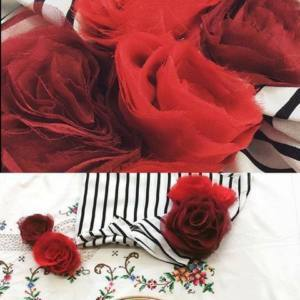 Relaunch of the Chiffon Roses Class