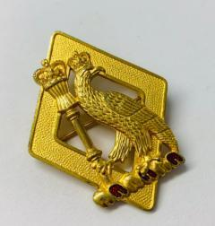 Royal College of Surgeons Pin Badge, Pin Badge, Button, Badge, Pin, Gold pin, Gold Button, Brooch, accessory