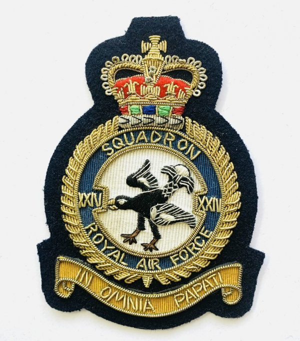 24th Squadron Blazer badge, badge, Cap, Cap Badge, Blazer Badge, Vintage badge, military, military badge, military button