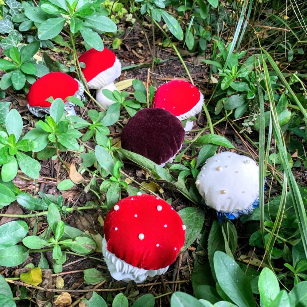 mushroom pin cushions amongst leaves